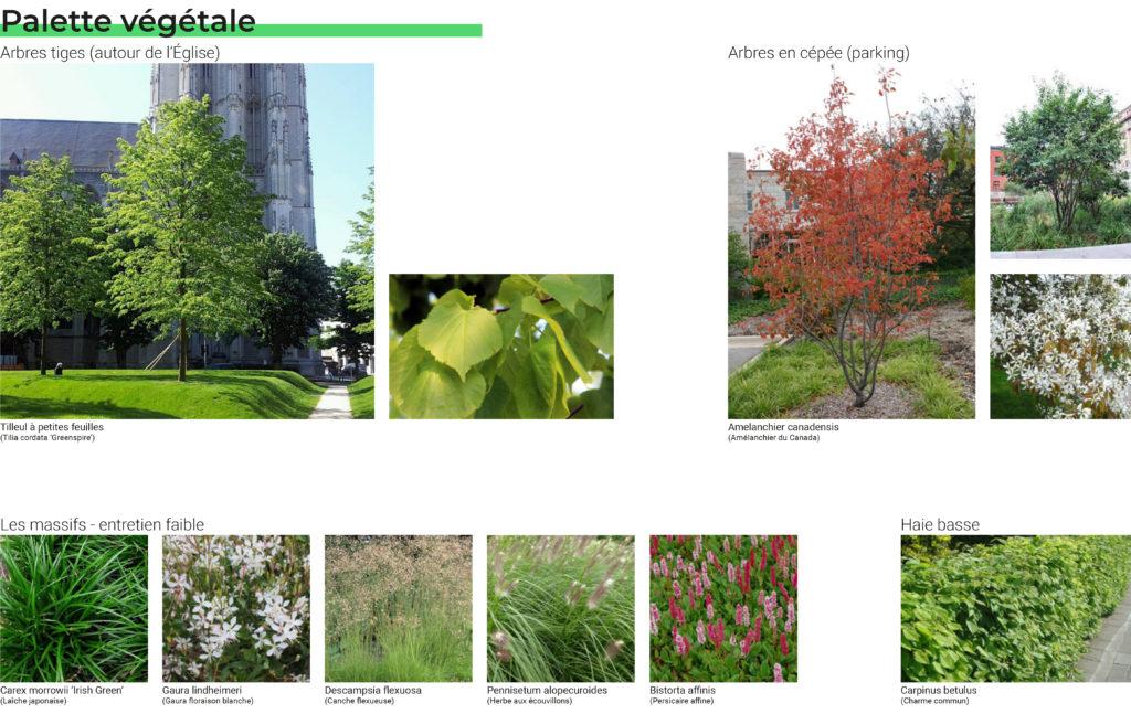 Palette végétale projet